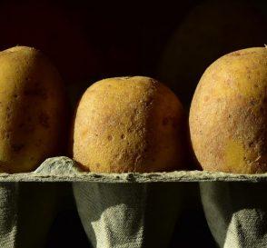 comment faire germer les pommes de terre