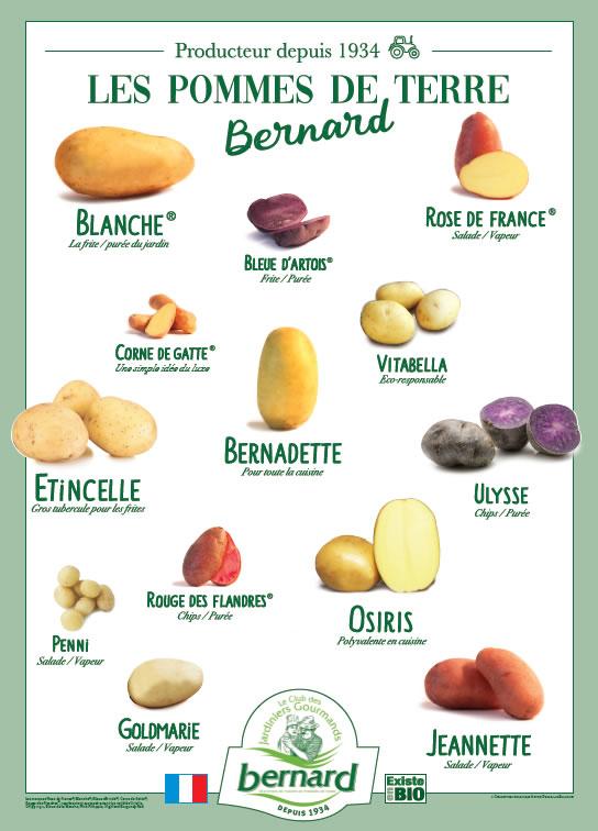 liste varité de pommes de terre