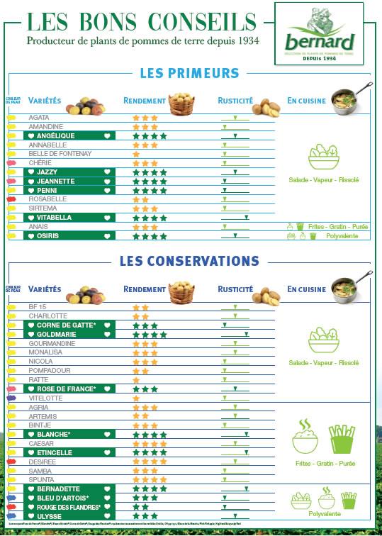 Tableau détaillé plant de pommes de terre