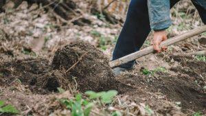 un jardinier travaille la terre pour faire un potager