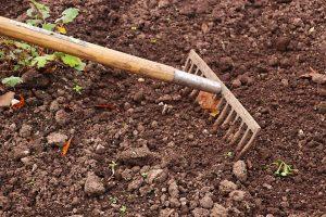 un jardinier ratisse la terre pour la préparer au semis