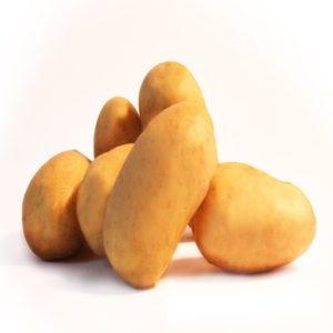 pommes de terre variété blanche